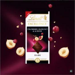 Lindt Excellence Cranberry Almond & Hazelnut Dark 100G